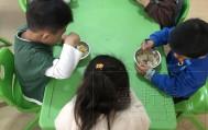 幼儿园小班第十一天日常生活记录,今天表现不错