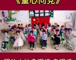 《童心向党》幼儿园小班版手势舞