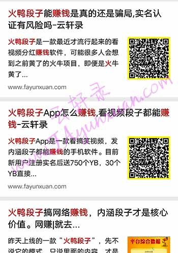 云轩录网站火鸭段子文章排名.jpg