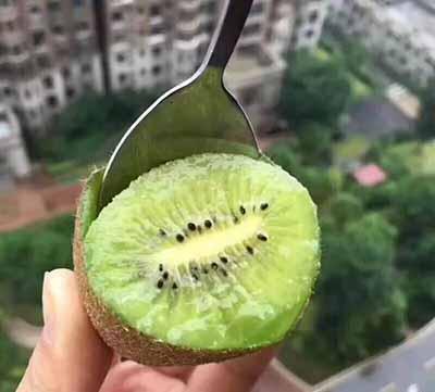 来自陕西的猕猴桃.jpg