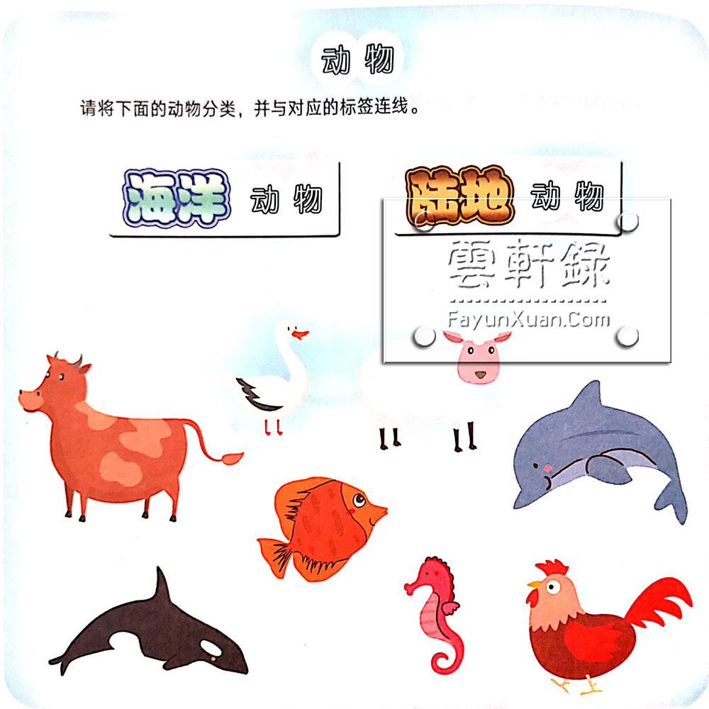 适合三四岁宝宝玩的认知类训练动物卡片.jpg