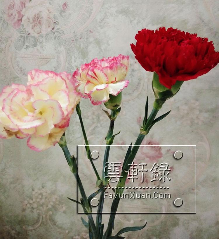 母亲节云轩宝宝送妈妈的礼物3.jpg