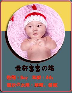 云轩宝宝的个人小站
